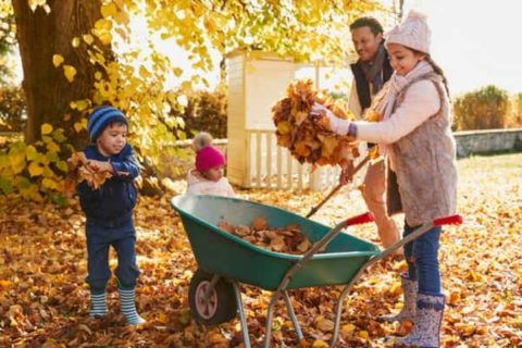 Family Picking Up Leaves